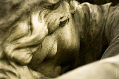(Ivan Herrador) Tags: stone cemetery luxembourgcity old white neglected nikkor nikond3 primelens statue macro micronikkor600mmf28 monochrome keatonhenson cimetièrenotredameluxembourg love lost