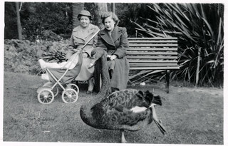 Doris baby and I and the Black Swan in the city_Australia_1956 (1)