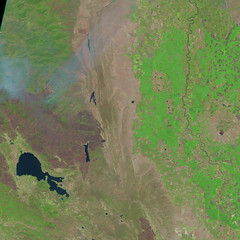 Mendocino Complex, 13 August 2018 (sjrankin) Tags: 16august2018 edited sentinel2 california northerncalifornia smoke fires wildfires l1ct10seja01641220180813t185918 centralvalley coastrange marysvillebuttes fire clearlake mendocinocomplex ranchfire riverfire burnscar esa europeanspaceagency large 1217mb