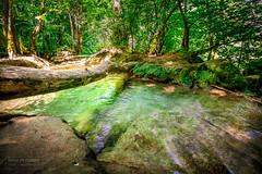 Jura_ cascade (Diane de Guerny) Tags: paysages cascade eau 5dmarkiv jura forêt sousbois paradise voyage france