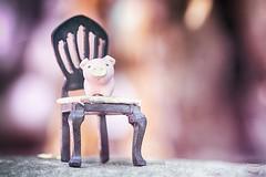 174/365 : Chair (♥GreenTea♥) Tags: pig eraser pigeraser pinkpig pink iwako iwakoeraser iwakoerasers イワコー t1i canon canont1i canont1irebel canonrebel eos canoneosrebelt1i ef100mmf28macrousm canonef100mmf28macro hdr googlenikcollection nikcollection colorefexpro viveza hdrefexpro 365 photoaday pictureaday project365 365toyproject oneobject oneobject365daysproject 365the2018edition 3652018 day174365 365day174 day174 project365174 23june18 project36506232018 06232018 chair miniaturechair tinychair