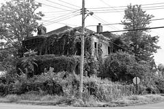 DMAFR Day 3 (38) (momentspause) Tags: abandoned abandonedbuilding roadtrip illinois canon5dmkiii canonef50mmf18 niftyfifty blackandwhite bw building blackandwhitephotography house abandonedhouse