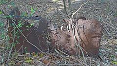 05 Ruin_05 (Tony Markham) Tags: mine mining coal coalmine coalmining old ruins ruin abandoned disused wollongong illawarra bush bushwalk escarpment