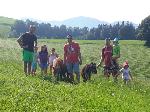 Ponywanderung in den Biowiesen