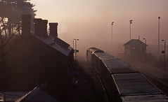 A foggy morning in Ipswich as a Class 56 passes Derby Road station with an intermodal train (mikul44171) Tags: fog glints class56 derbyroad station signalbox containers intermodal boites chimney contrejour backlighting