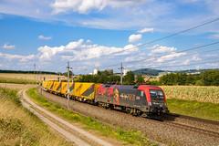 "470 503 ""Richard Wagner"" (139 310) Tags: np baureihe gysev österreich 470 evu tec zugnummer kbs 470503 tec41931 kbs150 passauerbahn katzbach oberösterreich at"