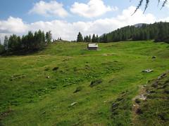Planina Polšak (Damijan P.) Tags: hribi gore mountains hiking slovenija slovenia ksa kamniškosavinsjkealpe kamniksavinjaalps velikivrh velikazelenica križevnik prosenak