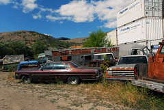 car junk yard (30) (RD1630) Tags: car junkyard wreck automobile auto wagen canada vernon britishcolumbia summer summer2017 outside