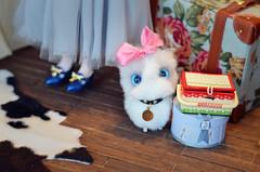 "Jimmy's cat ""Mimi"". (Moonrabbit_ly) Tags: doll dollhouse diorama miniature rement onesixth"