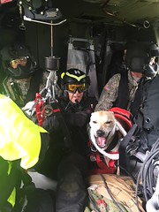 Pennsylvania National Guard (The National Guard) Tags: hoist rescue pennsylvania hart pahart helicopter aquatic team fort indiantown gap pa pang ng nationalguard national guard guardsman guardsmen soldier soldiers airmen airman us army air force united states america usa military troops 2018 dog pet