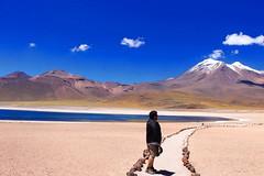 love (► Bee, like bees! <3) Tags: lagunamiscanti miscanti lagoon mountain sanpedro sanpedrodeatacama path