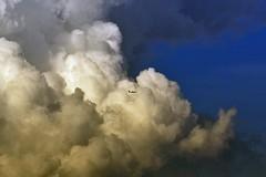 Flugzeug über dem Berliner Norden (M. Schirmer Berlin) Tags: plane airplane clouds twilight ryanair flugzeug airport flughafen flieger zwielicht sky berlin tegel txl deutschland germany pentax k1 150450 wolken planespot planespotting