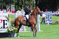 IMG_1581_rt (minions) Tags: dinard 2018 derby jumping cheval cavalier épreuve international