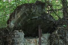 IMG_7163 (kramolych) Tags: ukraine kyiv war defensive long lasting fire point forest river summer research machine gun bunker fortified region україна київ війна оборона довготривала вогнева точка ліс річка літо дослідження