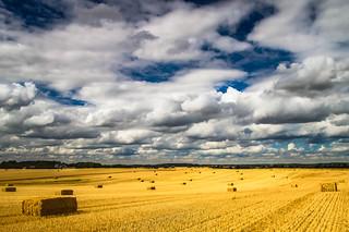 Wolken ☁️ über Stoppelfeld
