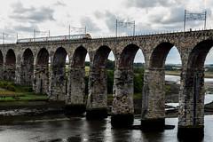 royal border bridge (werewegian) Tags: railway border bridge train berwick tweed royal england