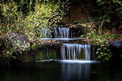 Cascade (Paul Leb) Tags: montréal québec canada cascade cascada eau water agua