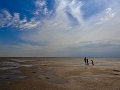 Wattenmeer (KalleKarl) Tags: ameland holland netherlands niederlande nordsee northsea
