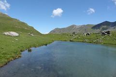 lac des Louchés 2402 mètres (bulbocode909) Tags: valais suisse moiry grimentz valdanniviers lacdeslouchés lacs montagnes nature eau nuages paysages rochers vert bleu groupenuagesetciel