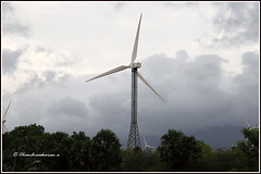 8075 - windmills (chandrasekaran a 50 lakhs views Thanks to all.) Tags: windmills clouds nature india canoneos6dmarkii tamronef28300mm
