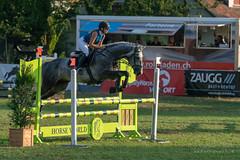 A9908436_s (AndiP66) Tags: springen langenthal 2018 5august2018 august pferd horse schweiz switzerland kantonbern cantonberne concours wettbewerb horsejumping equestrian sports springreiten pferdespringen pferdesport sport sony alpha sonyalpha 99markii 99ii 99m2 a99ii ilca99m2 slta99ii sony70400mm f456 sony70400mmf456gssmii sal70400g2 amount andreaspeters