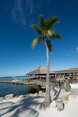 Islamorada Fish Company, Florida Keys (mklinchin) Tags: 2014 florida keywest keys vacation islamorada unitedstates us login logout