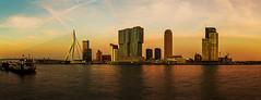 Rotterdam Sunset (FH | Photography) Tags: rotterdam skyline panorama pano sunset sonnenuntergang fluss brücke erasmusbrücke wahrzeichen hochhäuser skyscraper gebäude architektur ufer himmel stimmung stimmungsvoll stadt city modern holland netherlands niederlande europa abends horizont