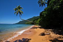 beach (Collin Key) Tags: redsandbeach indonesia pulaulabenke sulawesi lasolo southeastsulawesi indonesien id