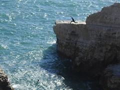 Daredevil Jump Off a Cliff at Shark Fin Rock - Shark Fin Cove, California (fcphoto) Tags: run stunt shark fin cove sharkfincove santacruz davenport sea coast pacificocean pacific water cliff rock people jump swim beach sunny