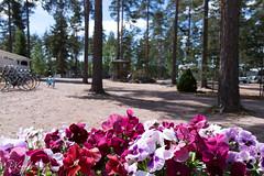 6R0A0007.jpg (pka78-2) Tags: sfc camping kokemäki pitkäjärvi motorhome caravan