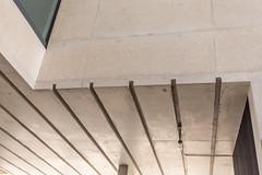 IMG_3663.jpg (patrick t ngo) Tags: architecture downtownmiami herzogdemueron miami museum museumpark pamm pérezartmuseummiami