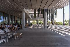 IMG_3691.jpg (patrick t ngo) Tags: architecture downtownmiami herzogdemueron miami museum museumpark pamm pérezartmuseummiami