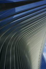 DSC07150 (RosieTulips) Tags: oculus worldtradecenter