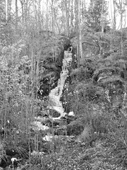 Waterfall in Hunsered in black and white 2017 (biketommy999) Tags: hunsered västragötaland sverige sweden biketommy biketommy999 2017 svartvitt blackandwhite vattenfall