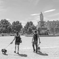 Autour de la Fontaine 13 (Xtian du Gard) Tags: xtiandugard nb placedelafontaine esplanade nîmes gard france scènedevie promenade chiens