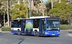Alicante, Plaza Arquitecto Miguel López 05.12.2017 (The STB) Tags: transportealicantemetropolitano tam bus busse autobus autobús publictransport citytransport öpnv transporteurbano transportepúblico alicante alacant