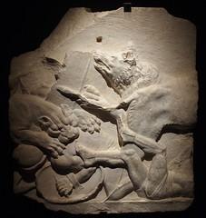 Relief avec scène de Venatio (chasse) provenant de Trebula Mutuesca (Marcus Valerius Martialis) Tags: homme panthère basrelief sculpture museedelaromanité expositiontemporaire noiretblanc iersapjc animaux combat gladiateur