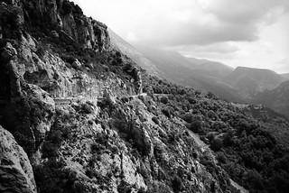 Provence D6 Voigtländer Vito