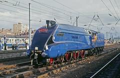 Mallard 1988 (paul_braybrook) Tags: 4468 60022 mallard lner classa4 pacific steamlocomotive doncaster southyorkshire railway trains eastcoastmainline
