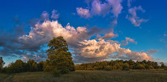 In the middle of nowhere (4) / Bezdroża Mazowsza (marcin.piontek) Tags: ifttt 500px pilica tomczyce clouds countryside river rural summer water blue green golden hour sunset nature trees tree cloudscape poland colours colors swamp forest travel hike hiking riverbendsunset zachód zakole