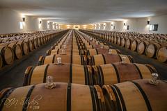 Medoc (DJNstudios) Tags: medoc bordeaux wine vineyard vineyards france french winery appellation cabernet franc merlot chateau rothschild lascombes cave vintner mouton