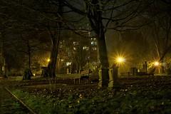 Celle - Parkanlage - Low Light Shot (pace90fotografie) Tags: low light celle friedhof park pace90 pace90fotografie patrickbecker patrick becker landkreis