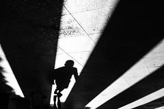 Rise 343.365 (ewitsoe) Tags: canoneos6dii ewitsoe polska street warszawa erikwitsoe poland summer urban warsaw blackandwhite shadows sun monochrome bnw mono streeturban city lines contrast 50mm canon