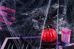 Spooky Halloween Background with bloody hands, pumpkins, cobwebs, spiders on black (lyule4ik) Tags: halloween scary pumpkin spider spooky black celebrate cobweb decoration old rustic skeleton spiderweb wooden hand candy dayofthedead festive goblinhands orange all candies carved confections day dead food holiday horizontal horror party saints scare skull sweet terror treat trick creepy death frighten amputated biscuits blackboard celebration chalkboard classroom cobwebs cookies decorative