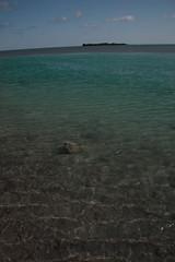 bthethBloFLislamoradaElobdm2009-12-01edmIMG_4947.jpg (rachelgreenbelt) Tags: usa islamorada northamerica scapes waterscape 710natural southeast americas florida
