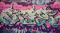 Sage... (colourourcity) Tags: streetart streetartaustralia streetartnow streetartmelbourne graffiti graffitimelbourne melbourne burncity colourourcity colourourcitymelbourne fun notserious nohaters sage msa fly flies burner