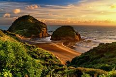 (Sunrider007) Tags: sony a7r3 a7riii 2470 landscape sun sunset sea plants vegetation sand beach marine coast pacific ocean tasman newzealand aotearoa sheep seastack erosion clouds auckland bethells