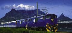 Blue-train-696x319