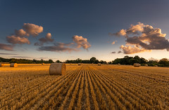 Back Home (Rob Pitt) Tags: hay bales field canon 1740 f4l sony a7rii sunset harvest wirral cheshire