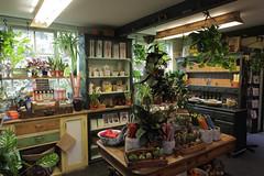 Garden Shop @ Penge (Adam Swaine) Tags: cafe tearooms shops england english penge interiors canon uk